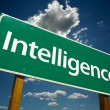 Intelligence Green Road Sign - Stock Photo