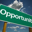 Stock Photo: Opportunity Green Road Sign