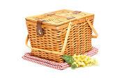 Picknickmand, druiven en opgevouwen deken — Stockfoto