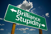 Brilliance, Stupidity Green Road Sign — Stock Photo