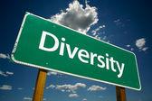 Diversity Green Road Sign — Stock Photo