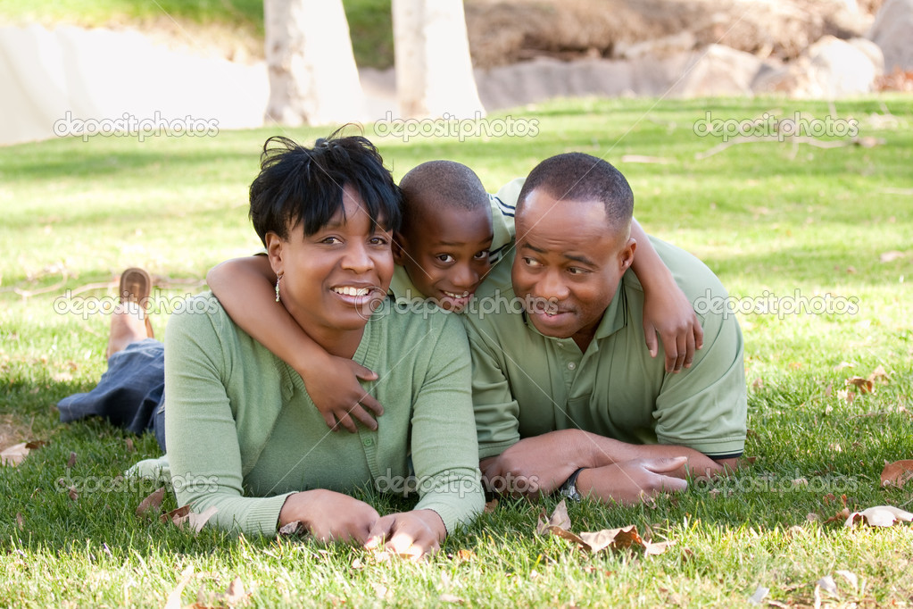 Happy, Attractive African American Family Enjoying a Day in the Park. — Stok fotoğraf #2333180
