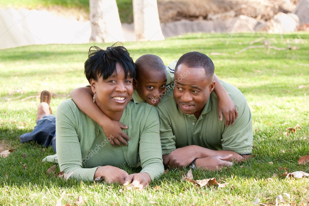Happy, Attractive African American Family Enjoying a Day in the Park. — Stock fotografie #2333180