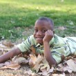 Stock Photo: Young Boy Having Fun In The Park