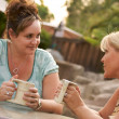 Girlfriends Enjoy A Conversation - Stock Photo