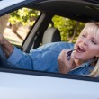 Girl Applies Lipstick While Driving — Stock Photo #2345662