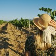 Blonde Woman Strolling Thru a Vineyard - Stockfoto