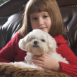Sweet Young Girl Poses with Her Maltese Puppy — Stock Photo