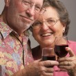 Happy Senior Couple Toasting - Stock Photo