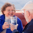 Stock Photo: Happy Senior Adult Couple Enjoying Drink