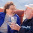Happy Senior Adult Couple Enjoying Drink — Stock Photo #2348375