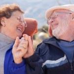 Happy Senior Adult Couple Enjoying Life — Stock Photo