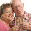 Stock Photo: Happy Senior Couple Toasting