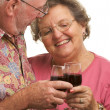 Happy Senior Couple Toasting Wine — Stock Photo #2349490