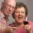 Happy Senior Couple Toasting Wine — Stock Photo #2349584