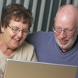 Senior Adults on Working on a Laptop — Stock Photo #2349763