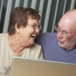 Senior Adults on Working on a Laptop — Stock Photo #2349764