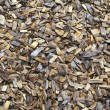 Background of Landscaping Wood Chips - Stock Photo