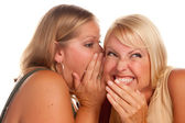 Two Blonde Woman Whispering Secrets — Stock Photo