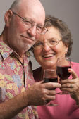 Happy Senior Couple Toasting — Stock Photo