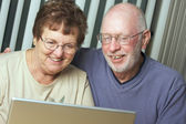 Senior Adults on Working on a Laptop Computer — Stock Photo
