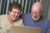 Senior Adults on Working on a Laptop — Stock Photo