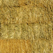 Stacked Straw Hay Bails — Stock Photo