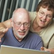 Senior Adults on Working on a Laptop Computer — Stock Photo #2351315