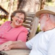 Loving Senior Couple Outdoors - ストック写真