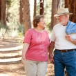 Royalty-Free Stock Photo: Loving Senior Couple Walking Outdoors