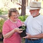 Loving Senior Couple Enjoying Gardening Together — Stock Photo #2352480