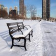 Empty Snowy Bench in Chicago - ストック写真