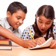 Hispanic Brother and Sister Studying — Stock Photo #2353370