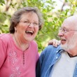 Happy Smiling Senior Couple Portrait - Stock Photo