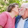 Loving Senior Couple Kissing Outdoors — Stock Photo