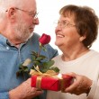 Happy Senior Couple with Gift and Red — Stock Photo #2354877