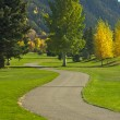 Aspen Golf Course as the Aspen Pines Change Colo - Stock Photo