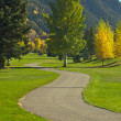Royalty-Free Stock Photo: Aspen Golf Course as the Aspen Pines Change Colo