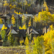 Stock Photo: Aspen Condos Amidst Changing Aspen Pines