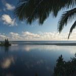 Тропический закат с пальмами — Стоковое фото