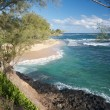 Stock Photo: Tropical Shoreline on Kauai, Hawaii