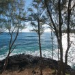 Tropical Shoreline on Kauai, Hawaii - Stock Photo