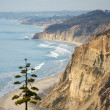 Torrey Pines Beach and Coastline - Stock Photo