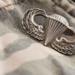 Paratrooper War Medal on Camouflage - Stock Photo