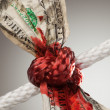 Wrinkled Dollar Tied Up and Bleeding — Stock Photo #2358672