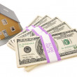 Home and Stacks of Money Isolated — Stock Photo #2359733