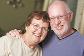 Happy Senior Adult Couple Portrait — Stock Photo