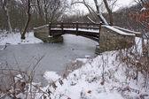 Beautiful Wooden Bridge Over Frozen Stream — Stock Photo