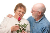 Happy Senior Couple with Red Rose — Stock Photo