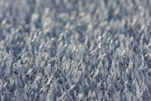 Morning Frost Crystals — Stockfoto
